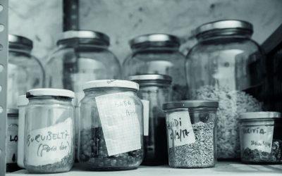 Aleka, la red vasca de productores de semilla ecológica